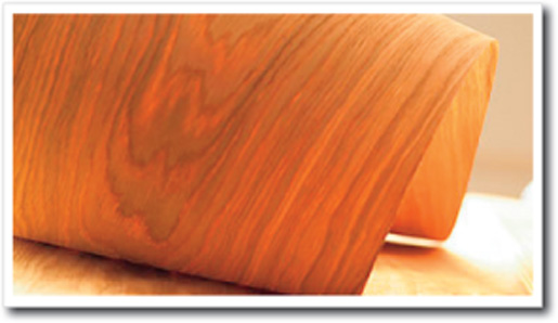 Pdf diy wood veneer for sale download wood sheets for Thin wood sheets for crafts
